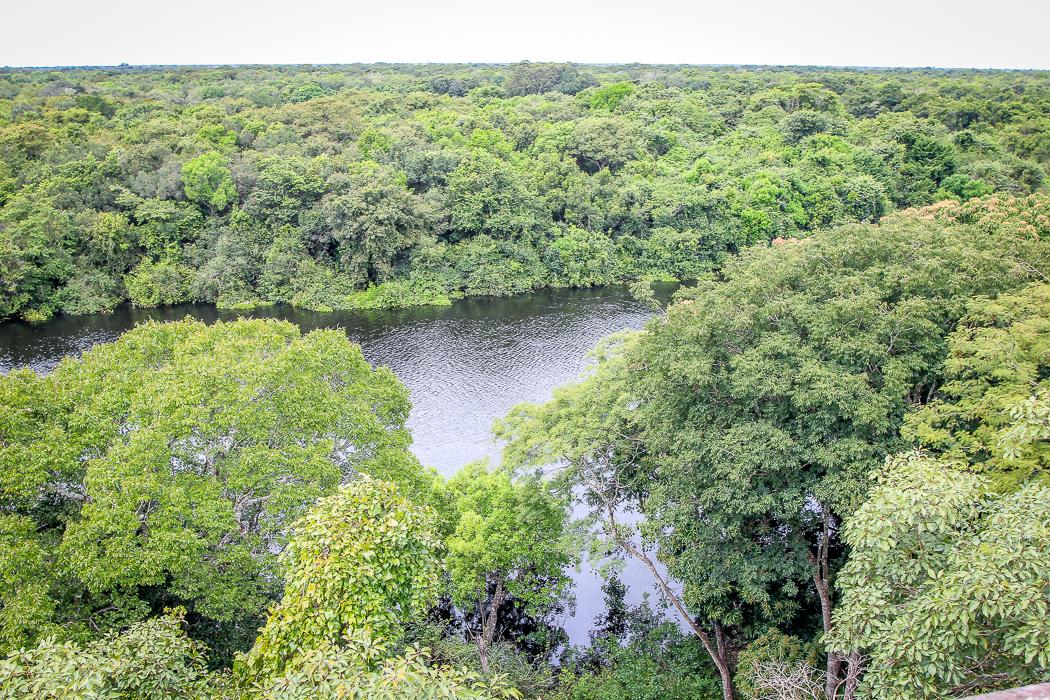 IMG_2192_pantanal
