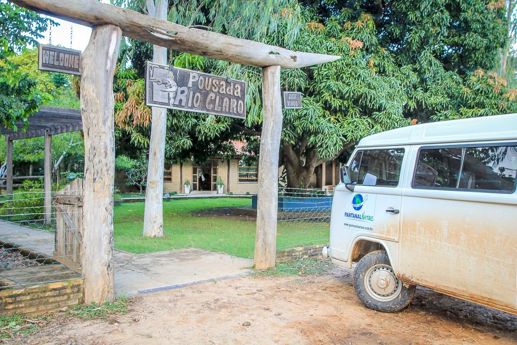 IMG_2262_pantanal