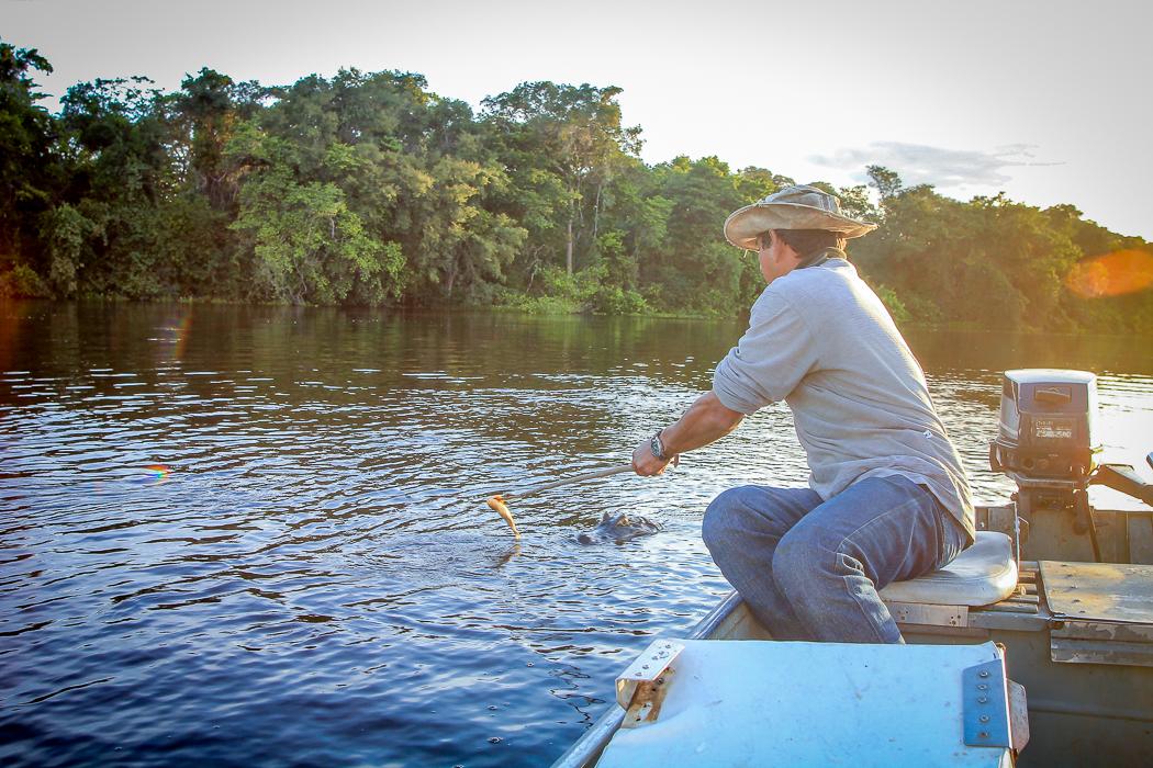 IMG_2369_pantanal