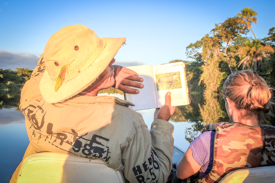 IMG_2375_pantanal