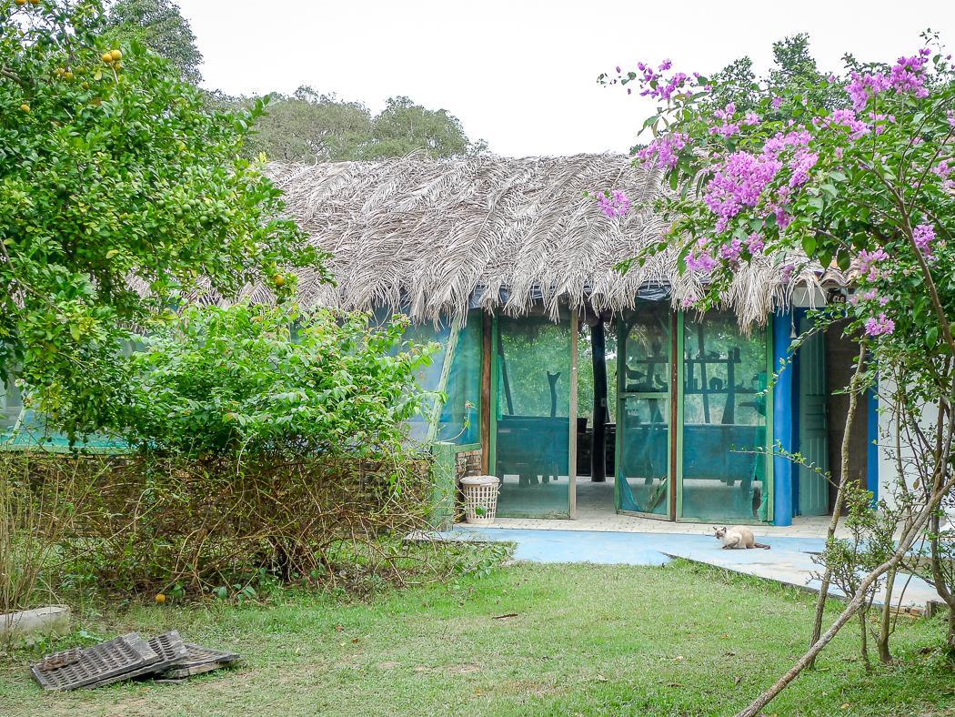 P1090884_pantanal