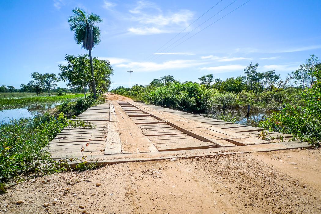 P1090978_pantanal
