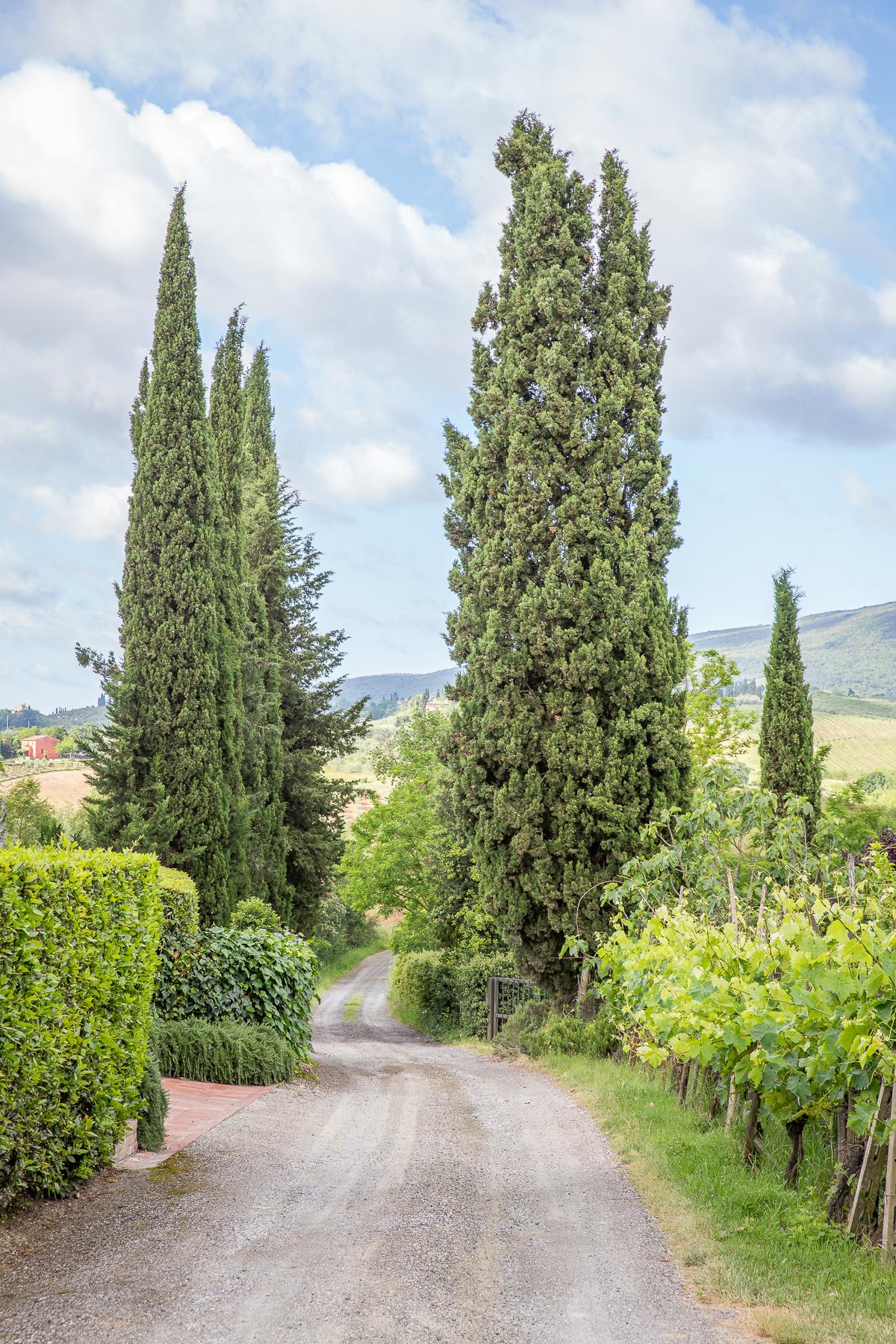 IMG_9368_Toscana