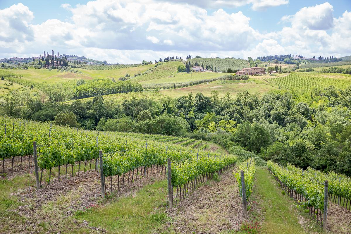 IMG_9475_Toscana