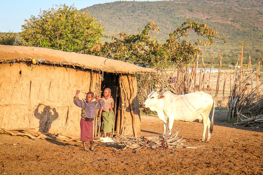 IMG_6235_Kenia_Masai Mara