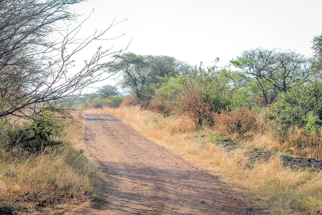 IMG_6434_Tansania