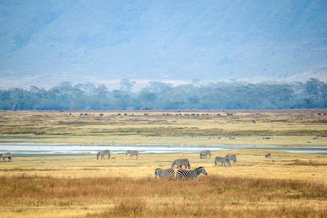 IMG_6679_Tansania
