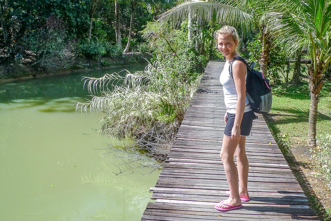 P1030508_Borneo