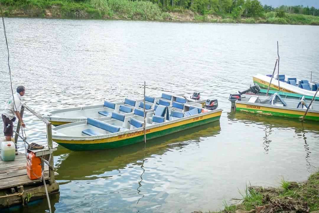 P1030546_Borneo