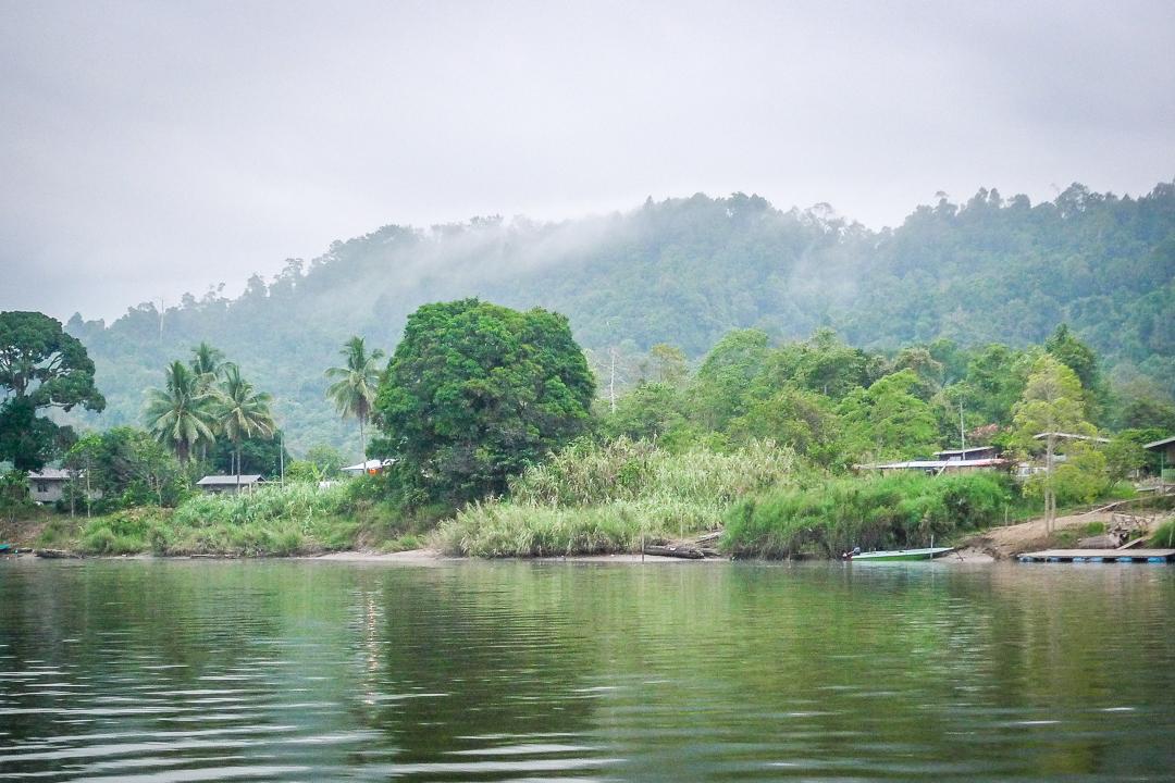 P1030649_Borneo