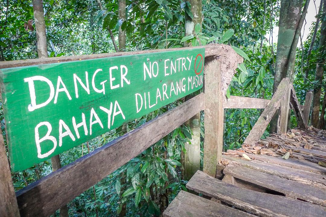 P1030774_Borneo