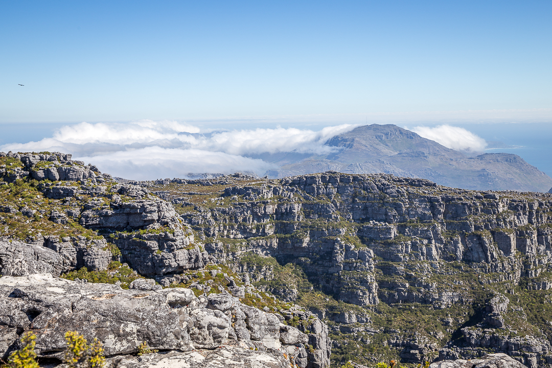 img_4258_cape-town
